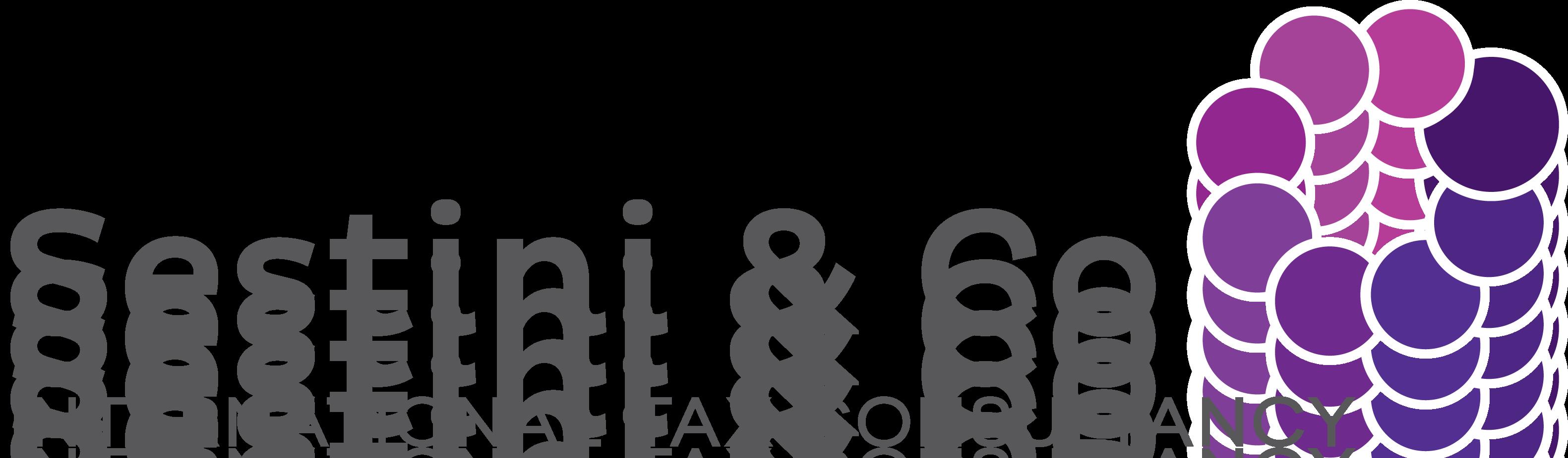 Sestini & Co International Tax Consultancy logo