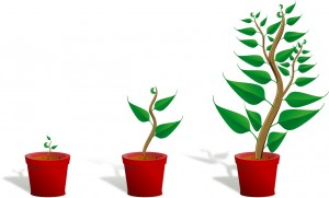 Seed Enterprise Investment Scheme (SEIS) is designed to encourage investment in companies under two years old